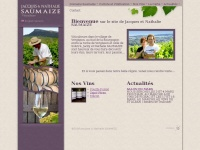 saumaize.com