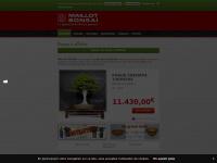maillot-bonsai.com